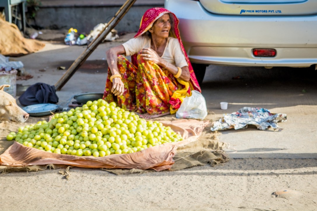 India April 2016-617