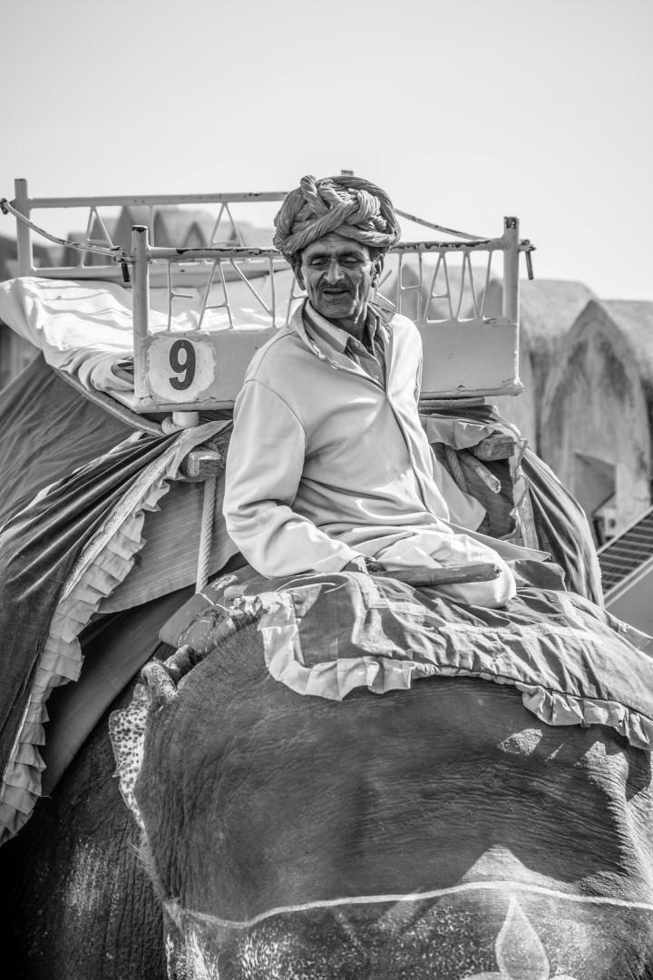 India April 2016-682